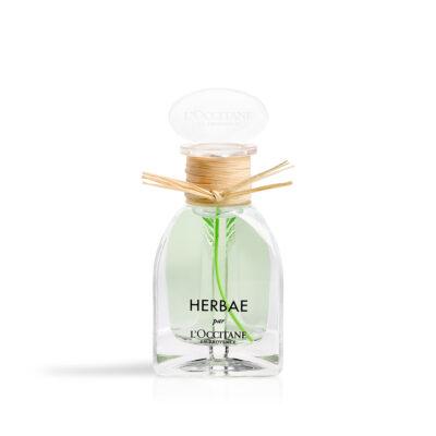 L'Occitane Herbae Eau de Parfum – 50ml - Grays Home Delivery